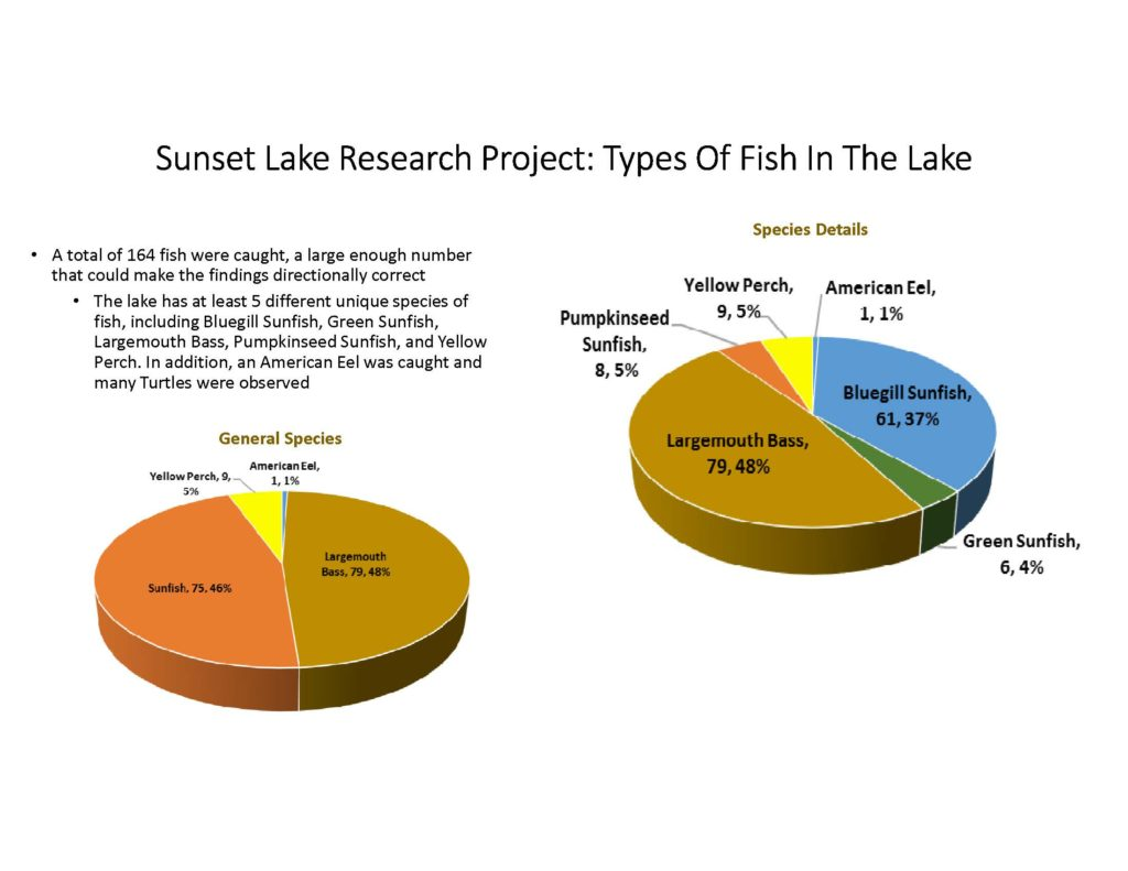fish-of-sunset-lake-research-project_page_03
