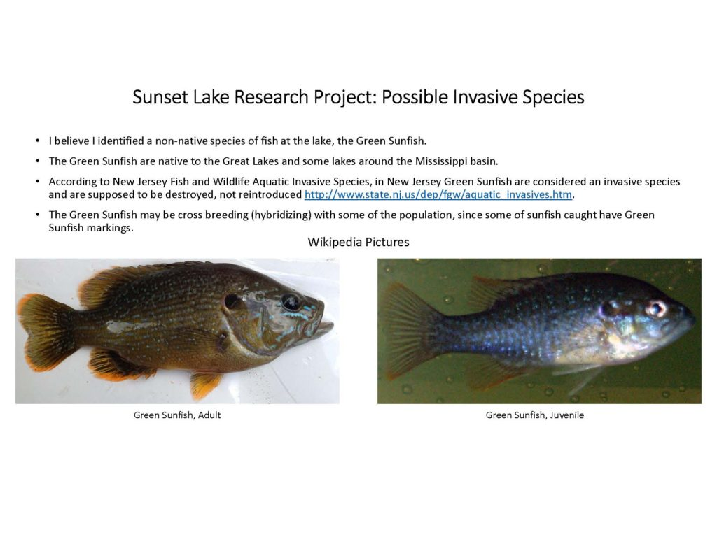 fish-of-sunset-lake-research-project_page_09