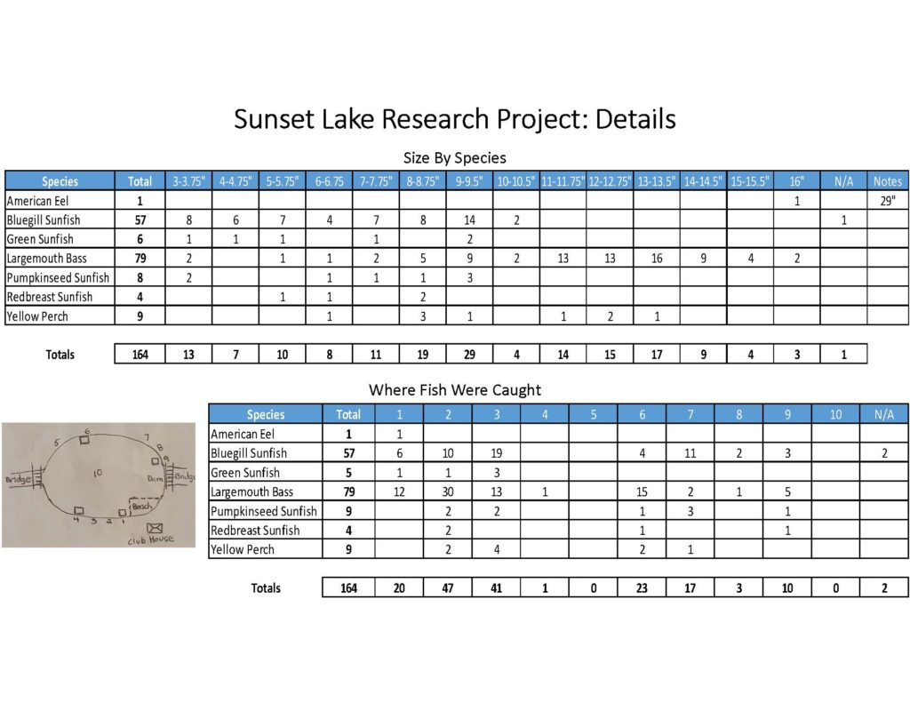 fish-of-sunset-lake-research-project_page_11