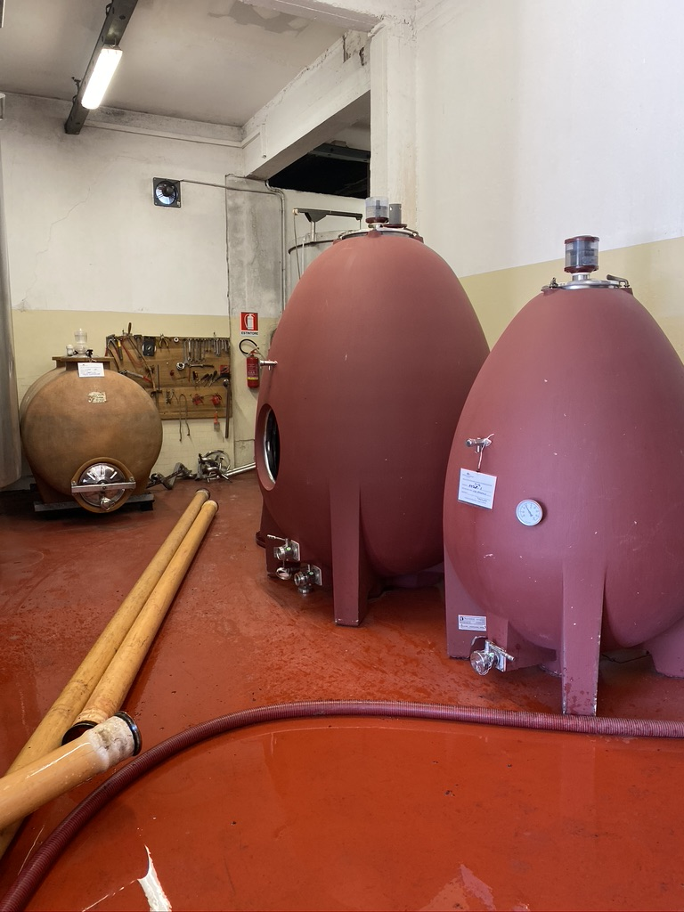 Monterinaldi Vineyard Cereamic Fermenting Tanks